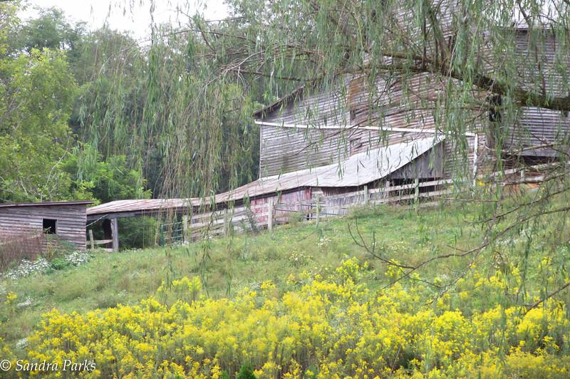 9-25-16: Barn, Spring Creek