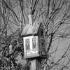 11-18-16: birdhouse