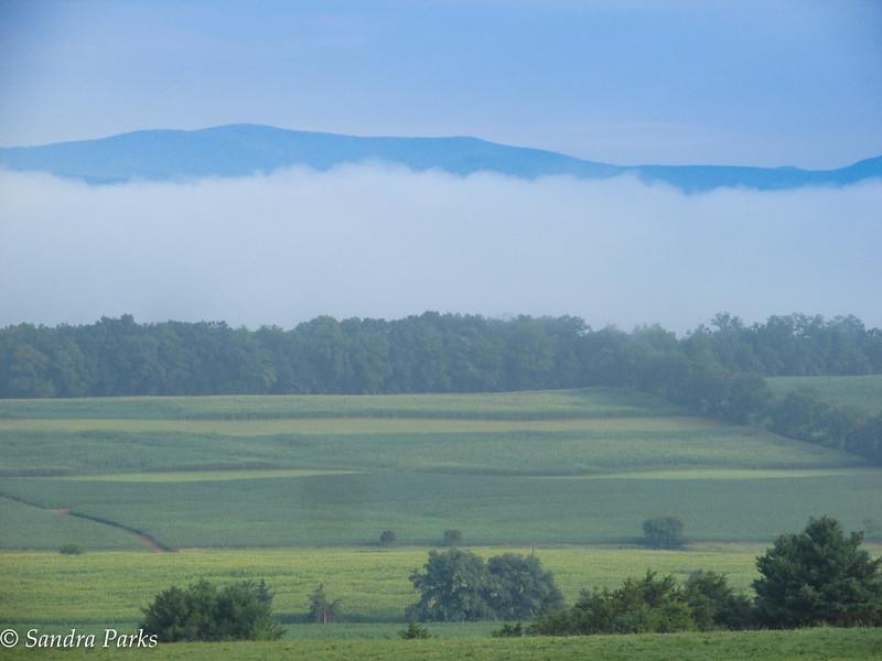 7-27-16: Morning fog