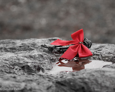 1-9-15: Discarded bow