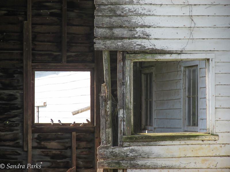 6-30-16: windows