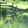 5-24-16 Spring Creek