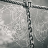 7-17-16: webs and chains