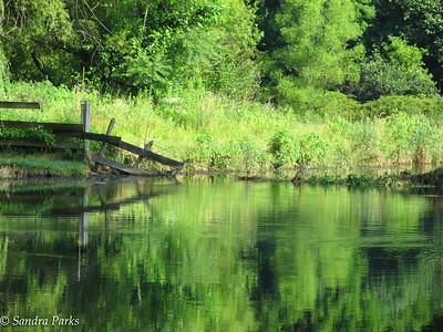 7-21-16: Spring Creek