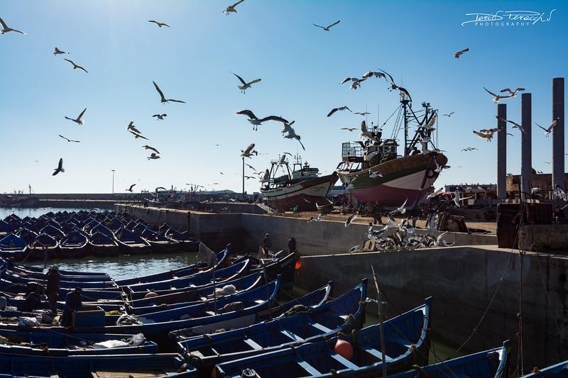 Il Porto Dei Pescatori