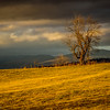 1-24-17: light and clouds, and the Alleghenies too, on Centerville