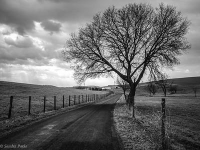 2-12-17: Custer Road