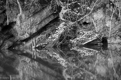 3-18-17: north river reflections