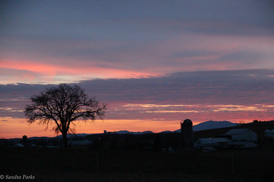 2-10-17:  Last sunset, Walkup Lane