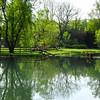4-28-17: Spring Creek