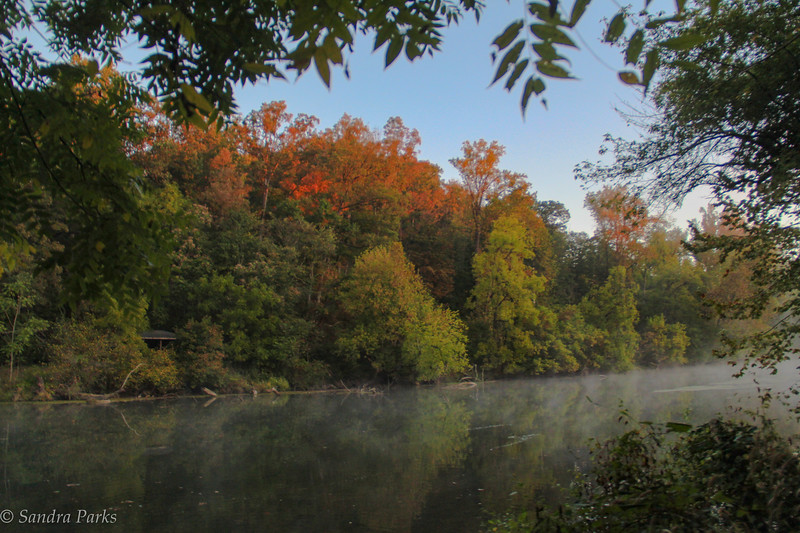 10-2-17: fall begins to show, by the river