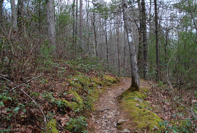 2-12-17: The road ahead, North River Gorge