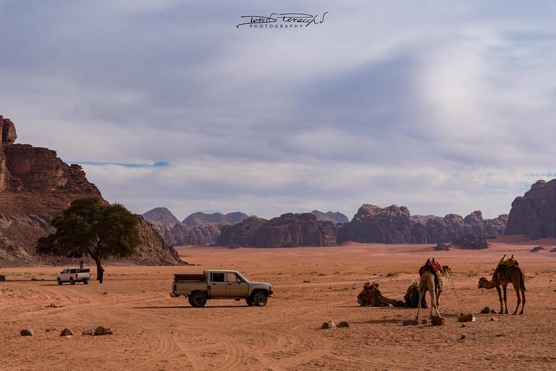 Pronti Per Addentrarsi Nel Deserto