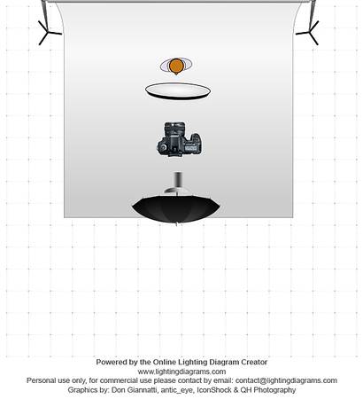 light diagram