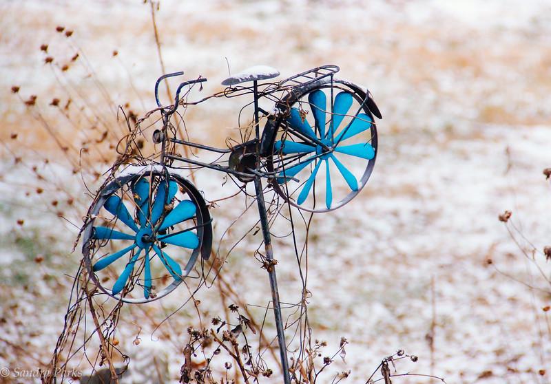 1-17-18: Backyard bike