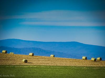 11-17-18: Hay bales and Alleghenies