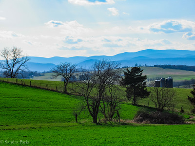 4-11-18: Green fields, blue skies. Reason to celebrate.