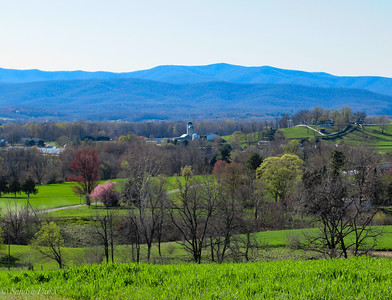4-20-18:  Spring in the Valley