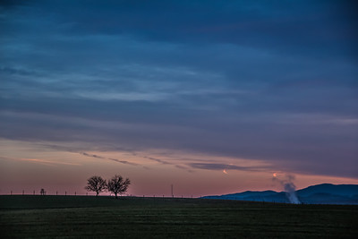 2-15-18: Two trees, at dawn