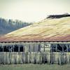 3-17-18 : old barn, Honey Run