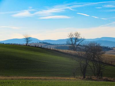 2-12-18: Green fields and sunshine
