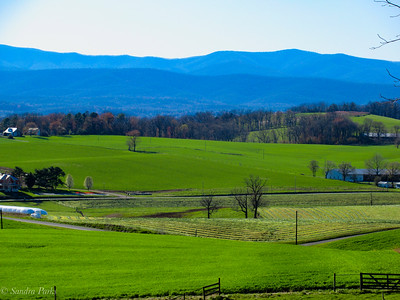 4-20-18: New cut hay. And mountains. The Valley in SPring