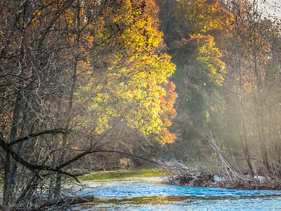 11-8-18: Dry River/North River confluence
