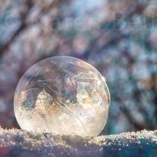 Frozen Magic Bubble