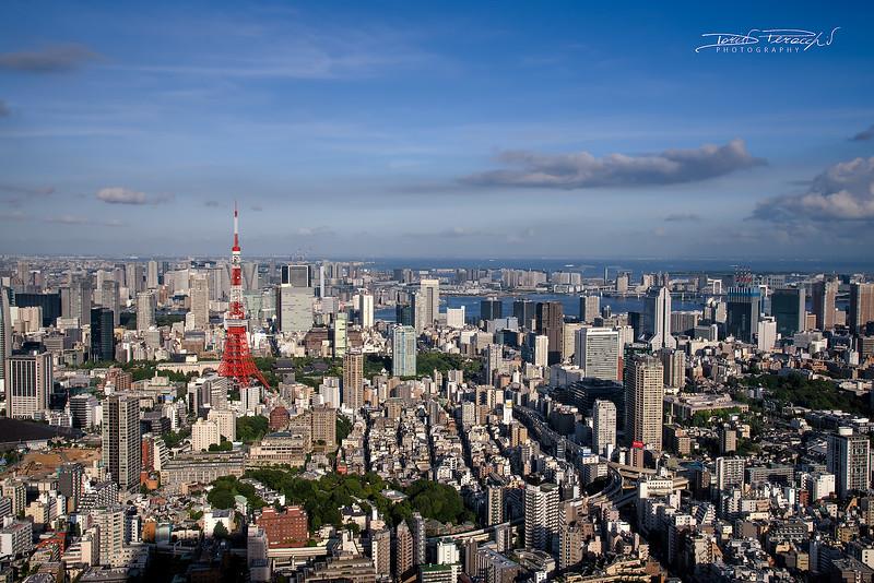 Skyview Mori Tower, Roppongi Hills