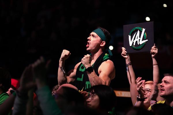 Los Angeles Valiant fan