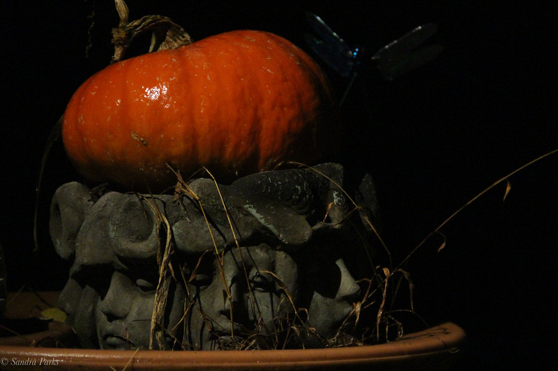 11-18-19: Faces in the dark in the rain. WIth a pumpkin.