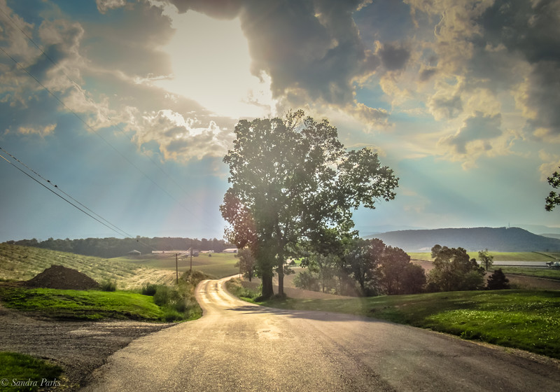 5-19-19: The road ahrad, today