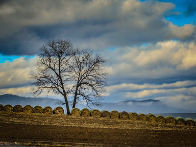 12-14-19: Hay bales and clouds lifting off the mountains