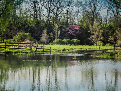 4-18-19: Spring Creek