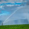 7-18-19: Irrigation