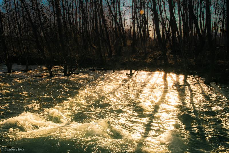 3-5-19: Sunlight on rushing water