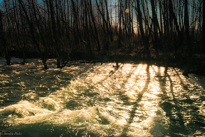 3-5-19: Sunlight on rushing water