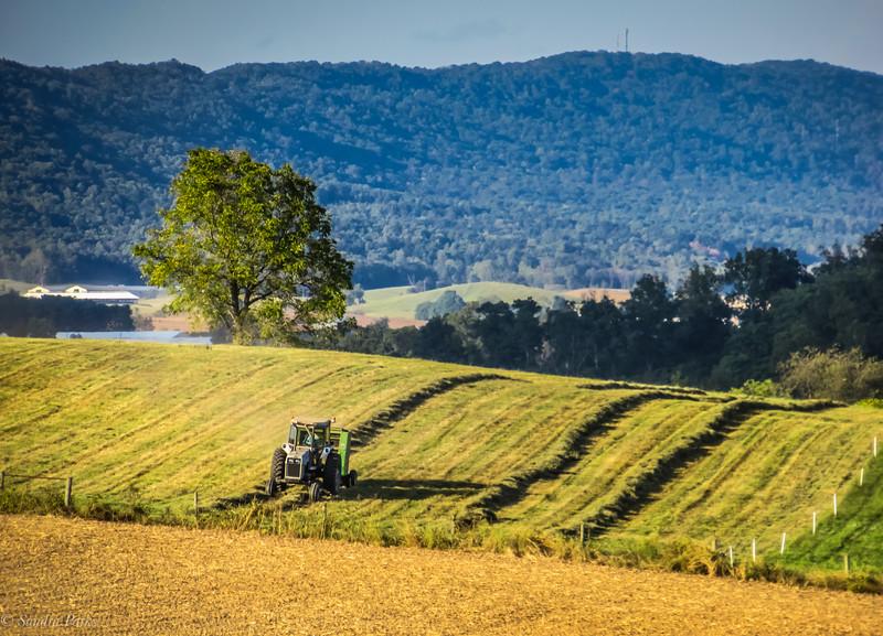 9-16-19: Making hay