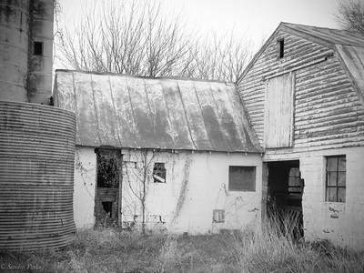 11-3-1-19: old barn