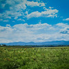 5-27-19: A field of poppies, and the Blue RIdge.