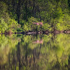 4-27-19: North river reflections