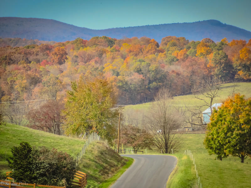11-5-19: the road ahead, today... Daniel Cupp Road.