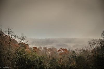 11-17-19: Icy fog