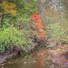 10-20-19 : Bridgewater -19: Dry River