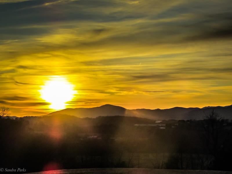 11-25-19: November's golden light, Thomas Spring