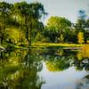 9-20-19: Spring Creek