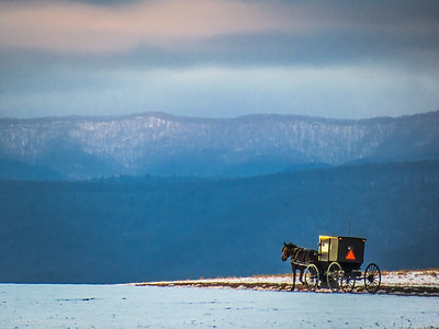 1-16-19: Horse and buggy, and the Alleghenies.