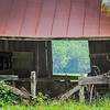 5-26-19: through the barn window
