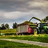 10-7-19: Harvest time