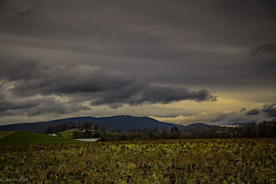 12-10-19: Mountains and clouds, and a winter field.